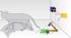 Schrodingers cat web