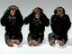 Monkeys%20three%20see%20hear%20speak