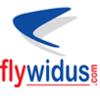 Flywidus