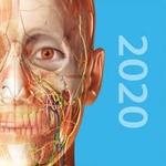 Human Anatomy Atlas 2020 IoS App