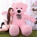 5 feet teddy (steal deal)