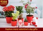 Nurserylive : Send Free Valentine's Surprises To 5 Special People