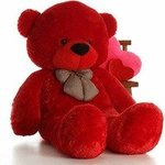 CLICK4DEAL Stuffed Soft Cotton Teddy