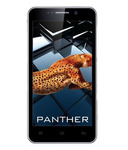 iBall Andi 5k Panther (8GB, Wine)