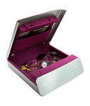 Godrej Goldilocks Personal Locker
