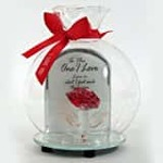 "Archies ""My Love"" Love Quotation on  Glass  Bottle (6 cm x 6 cm x 15 cm, Pink)"