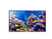 Panasonic 139.7 cm (55) 4K (Ultra HD) Standard LED TV TH-55CX400